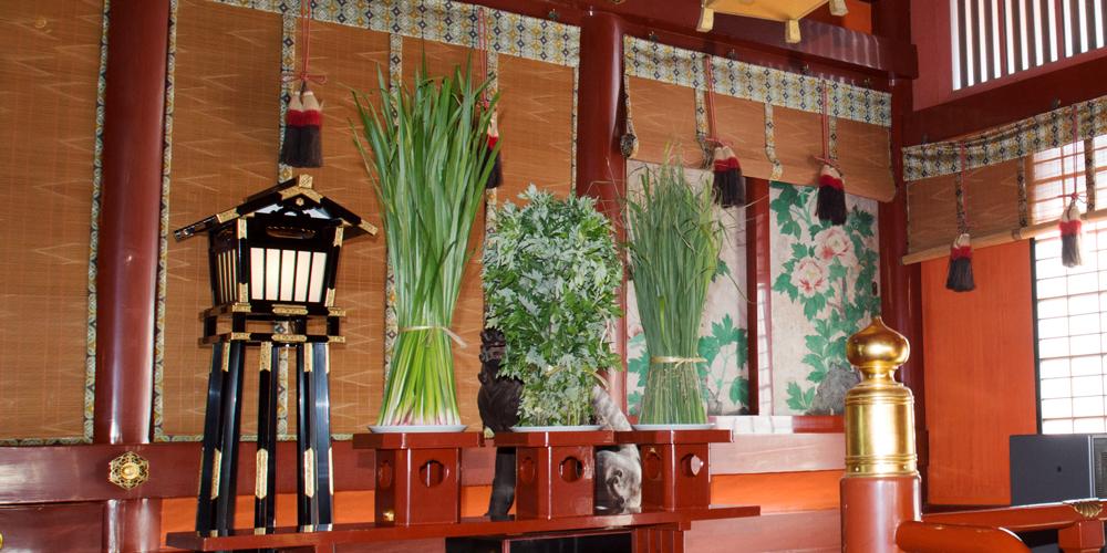菖蒲・蓬・粽